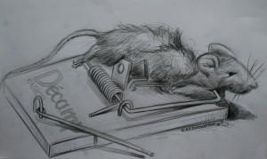 art-borescences_150408_ condition animale_piège_a_souris_tapette(5)